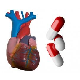 علاج فشل عضلة القلب